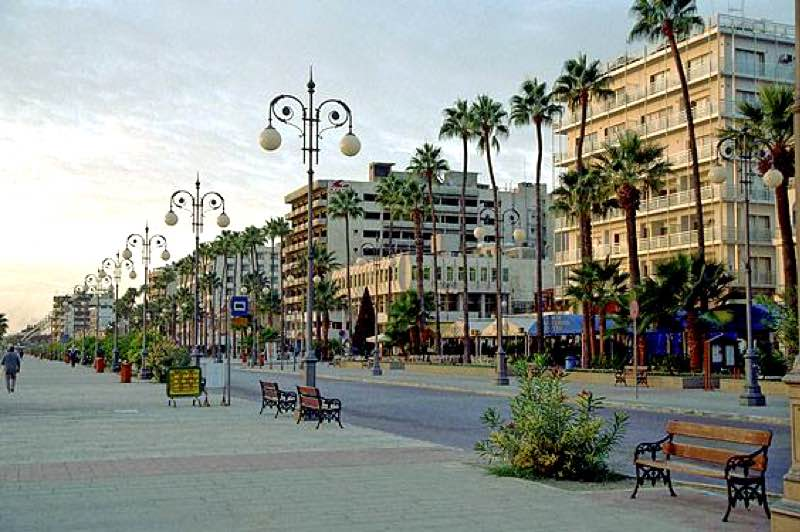 Palm Trees Promenade in Larnaca Travel Guide