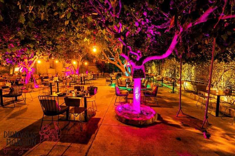 Dionysus Mansion Restaurant in Limassol Travel Guide